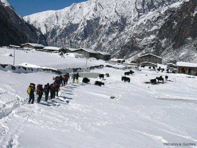 ice-trekking-nepal