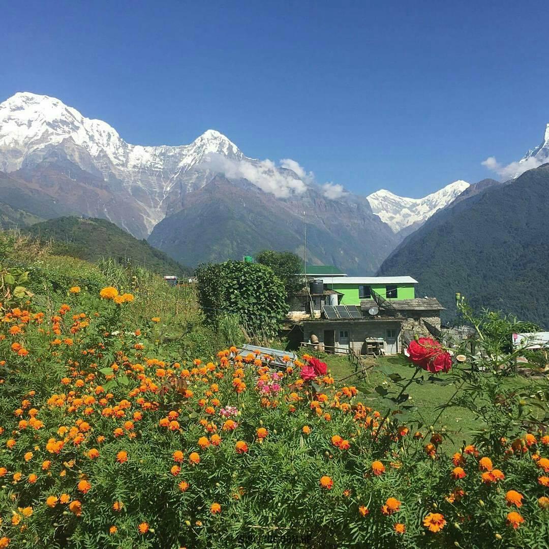 Annapurna and Dhaulagiri Trekking